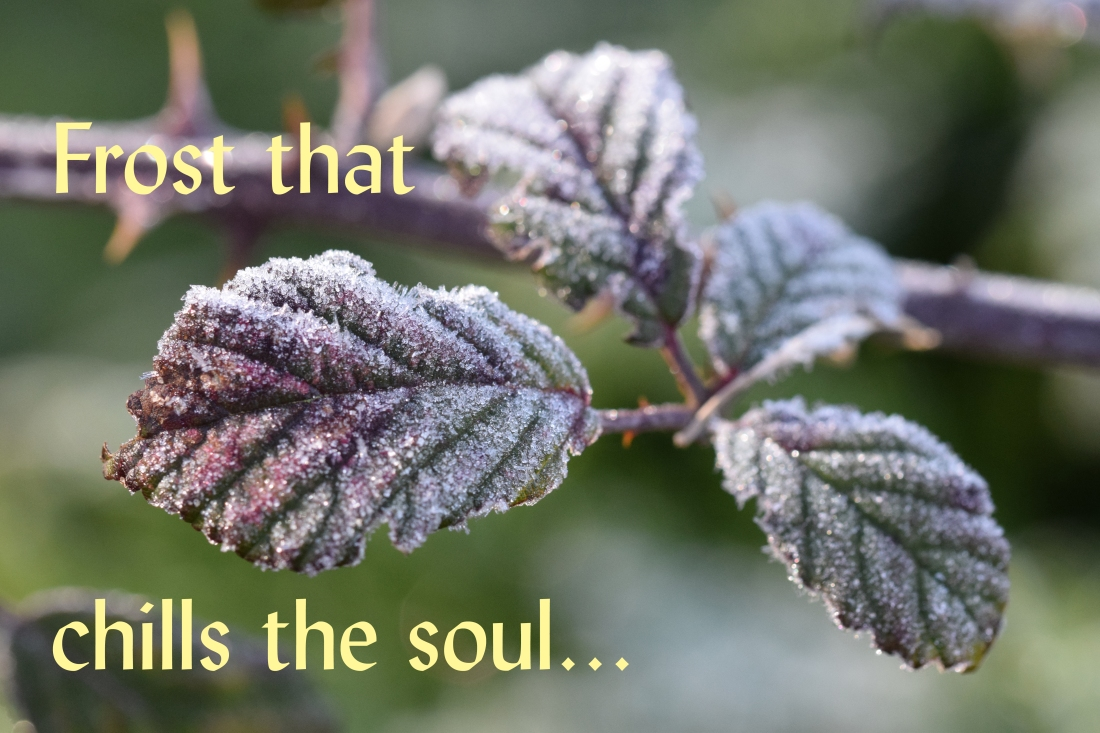 Frost that chills the soul Lent 2018