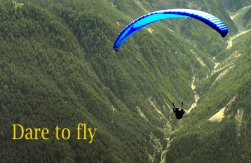 dare to fly.jpg
